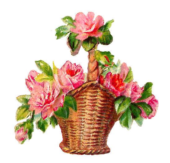 Clipart Flower Baskets : Antique images spring flowers red pink rose basket