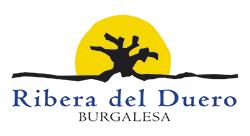 Ruta Ribera del Duero Burgalesa