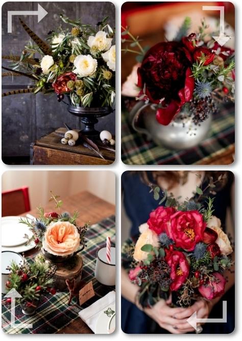 blommor, fjädrar, höst, scottland