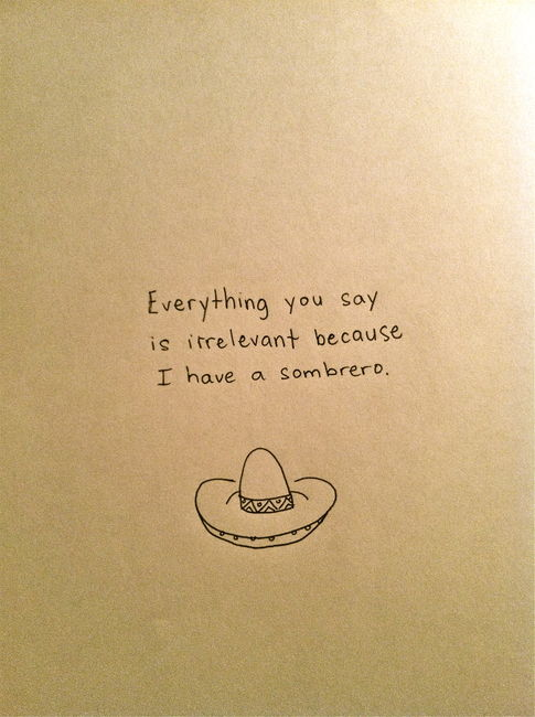 Everything You Say Is Irrelevant Because I Have A Sombrero