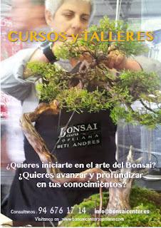 Taller de Bonsai en Bonsai Center Sopelana