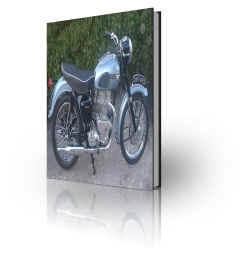Triumph TRW500 SV500 Twin Repair Manual