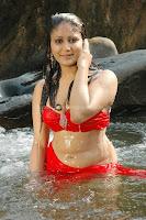 Amrutha, valli, hot, wet, navel, pics