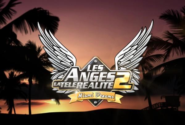 La ferme Jérôme les anges de la télé réalité 2
