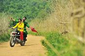 Kavvintha movie photos gallery-thumbnail-11