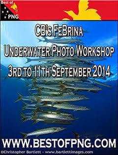 CB's FeBrina Underwater Photo Workshop 3rd to 11th Spetember 2014