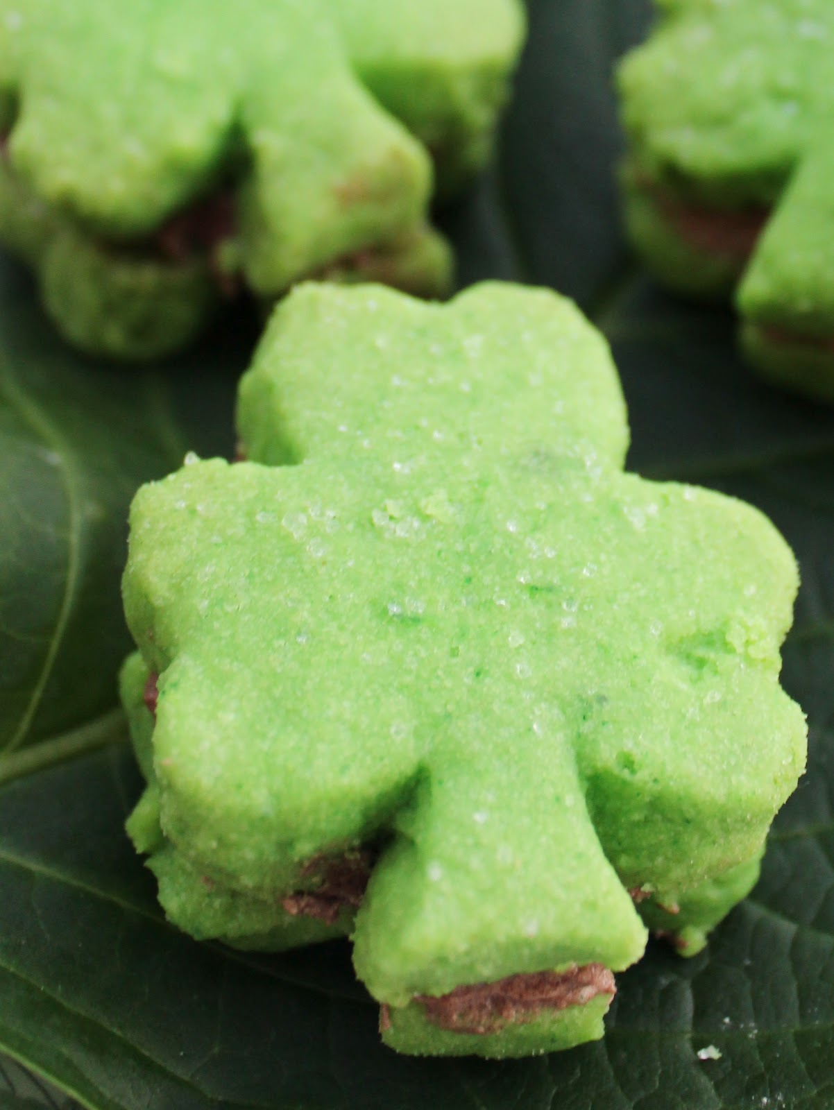 Serendipity And Kate Shamrock Shortbread With Chocolate