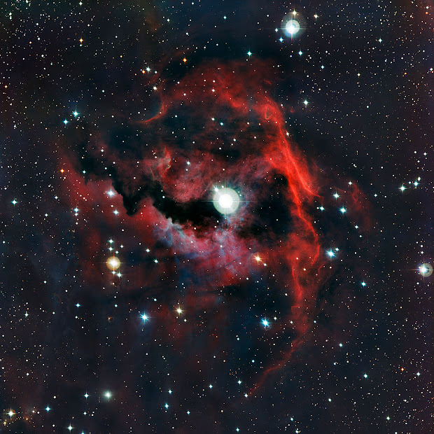 Sh 2-292, the Seagull Nebula