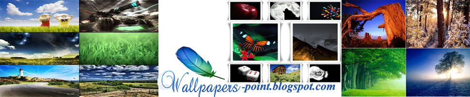 WALLLPAPERS POINT