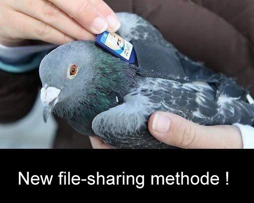 New File-Sharing Methode!