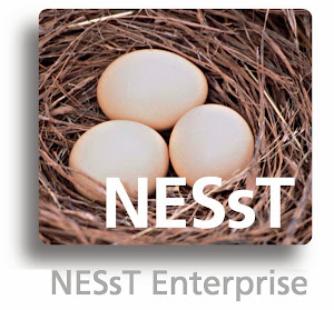 NESsT Enterprise