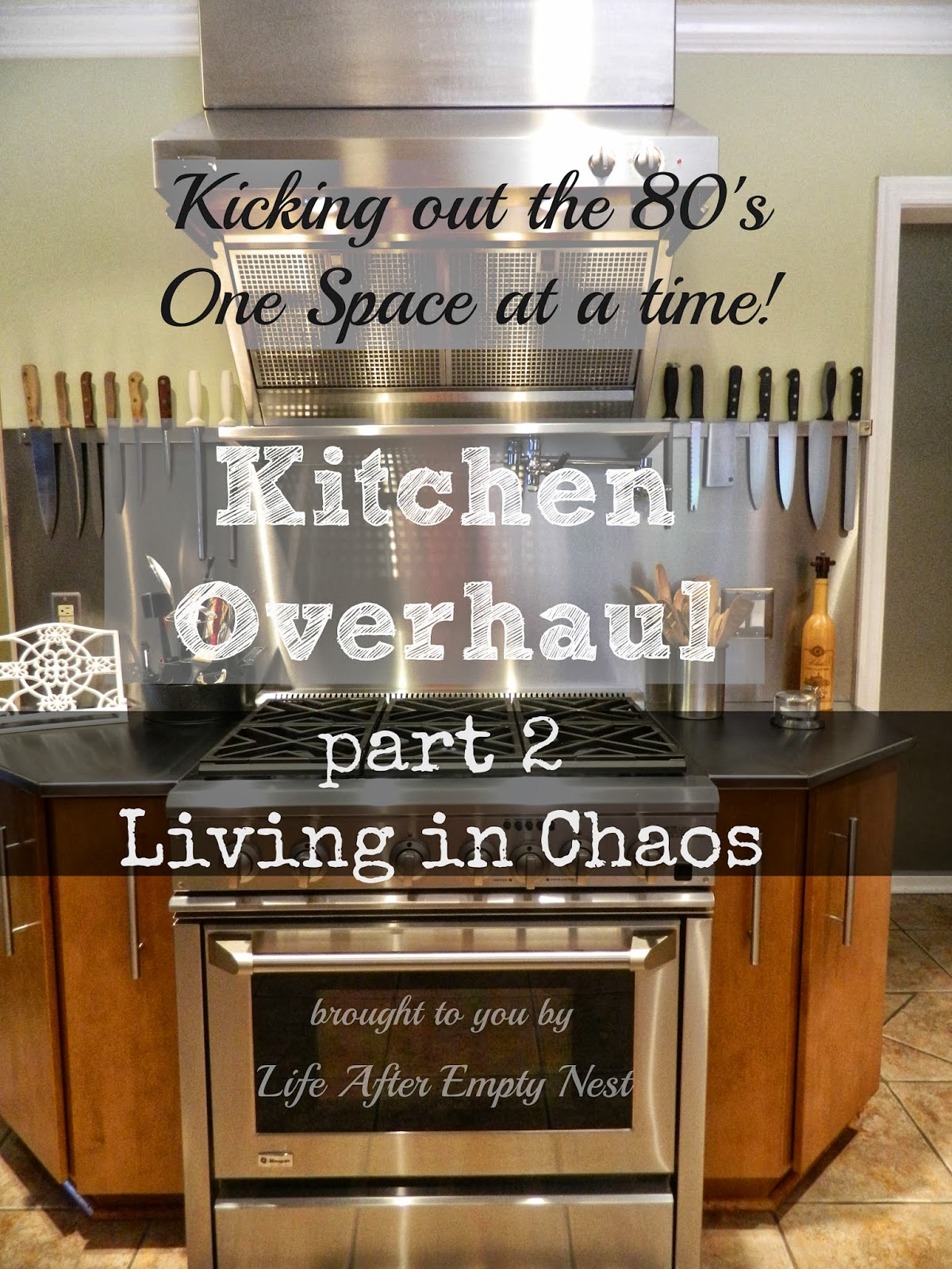 Life after empty nest kitchen overhaul part 2 living in for Our life in the kitchen