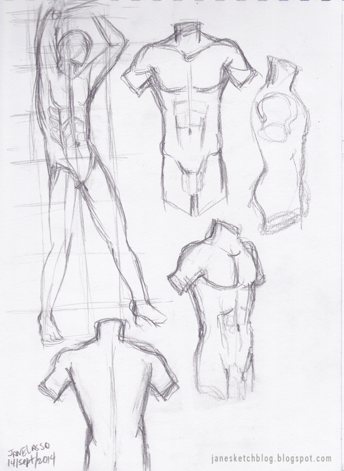 Dibujo de torso masculino