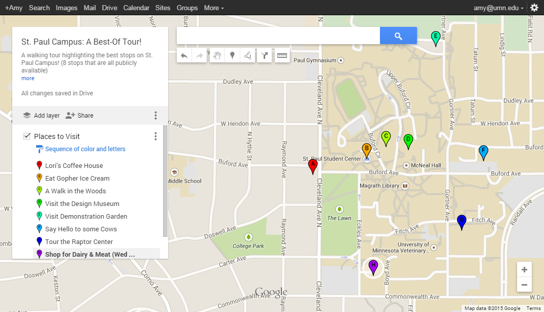 Custom Google Map example