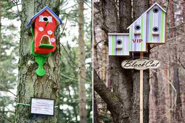 birds_houses