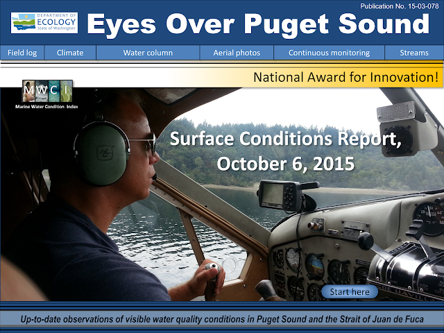 Eyes Over Puget Sound