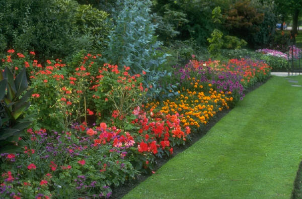 Blogs me landscaping ideas backyard trains hobby for Perennial garden design