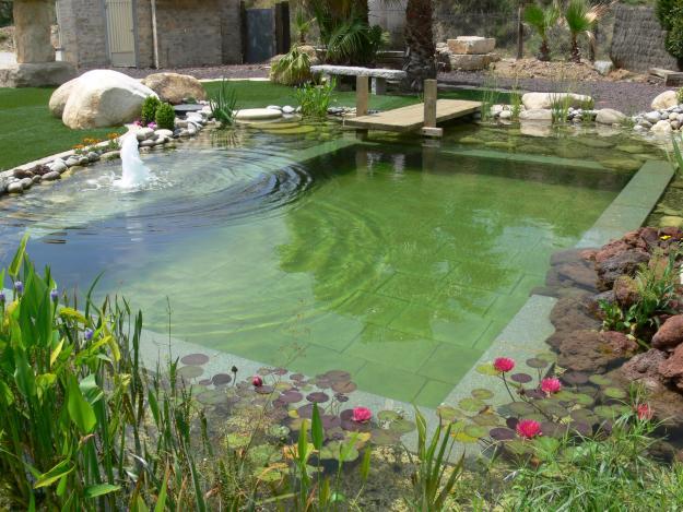 Piscinas naturalizadas taringa for Bio piscina