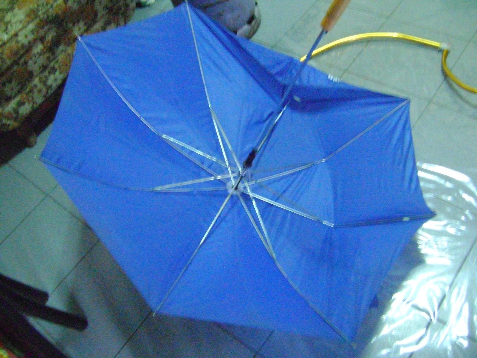 Juliette una peque a idea para hacer las alas de morrigan - Tela de paraguas ...