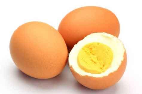 Telur Rebus - Perawatan Burung Lovebird Dengan Mudah