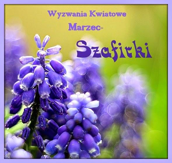 marzec - szafirki