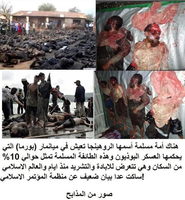 Kekejaman Pemerintah Myamar ! Penderitaan bangsa Rohingya.