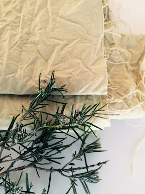 natural dying fabrics rosemary