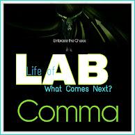Life of LAB!
