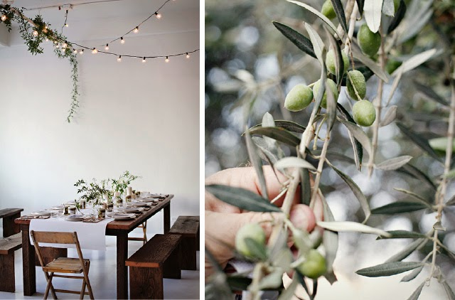 Olive Tree and table setting