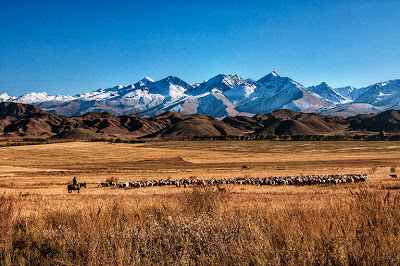 kyrgyzstan 2014, central asian tours,