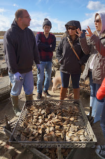 Big Rock oyster Company Tour   Aaron   Fletcher School