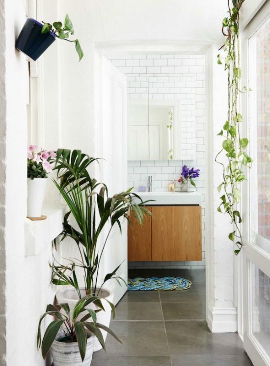 fresh and white bathroom