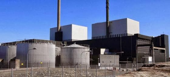 Πυρηνικός συναγερμός εξαιτίας τεράστιου κοπαδιού μεδουσών σε έναν από τους μεγαλύτερους αντιδραστήρες στον κόσμο