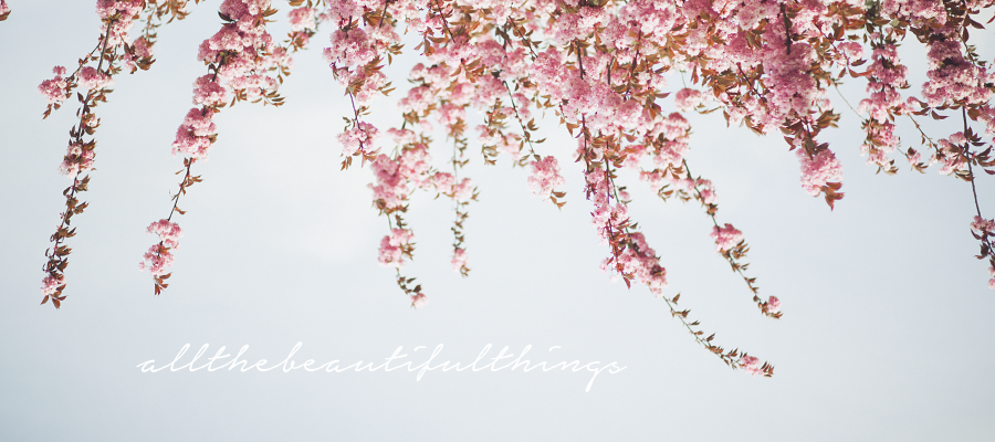 Allthebeautifulthings