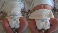Geobels Fitted Cloth Nappies