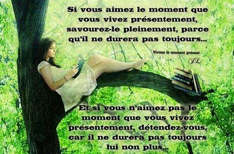 100 proverbes sur la vie en français - proverbe de la vie