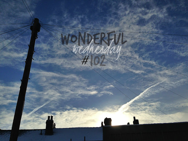 Wonderful Wednesday #102