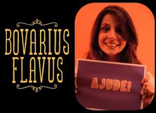 Bovarius Flavus