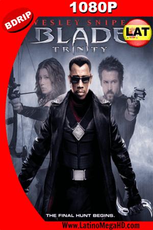 Blade: Trinity (2004) Latino HD BDRIP 1080p ()