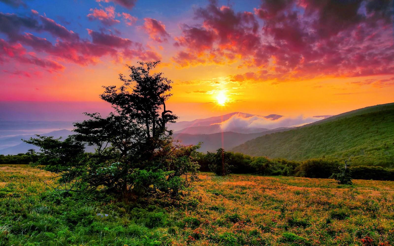 papel de parede natureza paisagem Entardecer no Vale