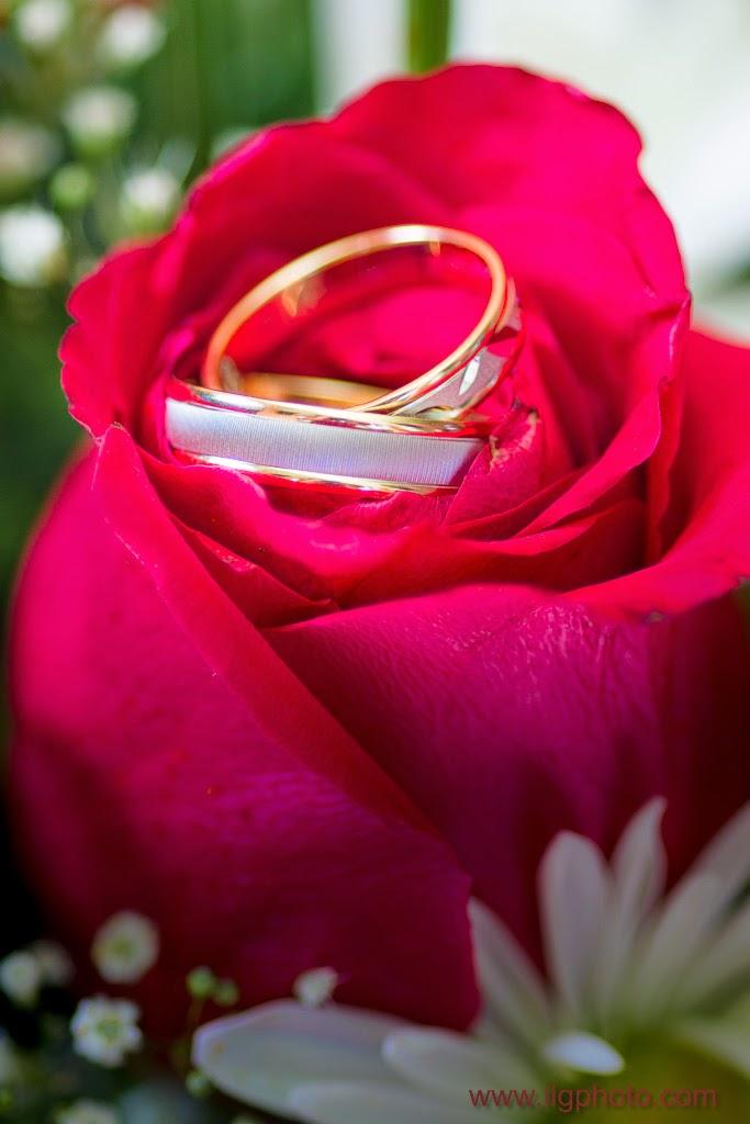Mariage de Steffy et Manuel: les alliances dans la rose