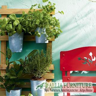 Kondisi Suhu dan sinar matahari kebun sayur rumah