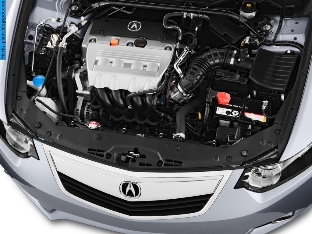 Acura tsx car 2013 engine - صور محرك سيارة اكورا تي اس اكس 2013