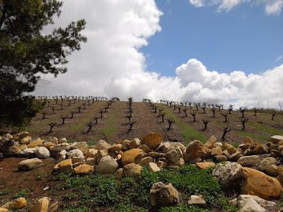 Photos of  San Luis Obispo County Old Rocks to Celebrate Old Rock Day