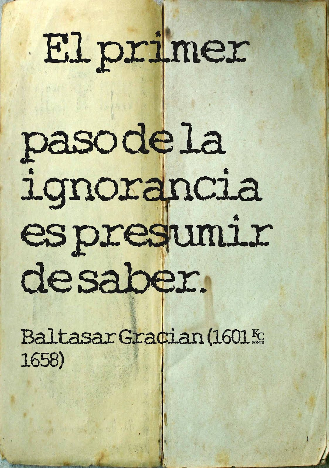 frases de ignorancia