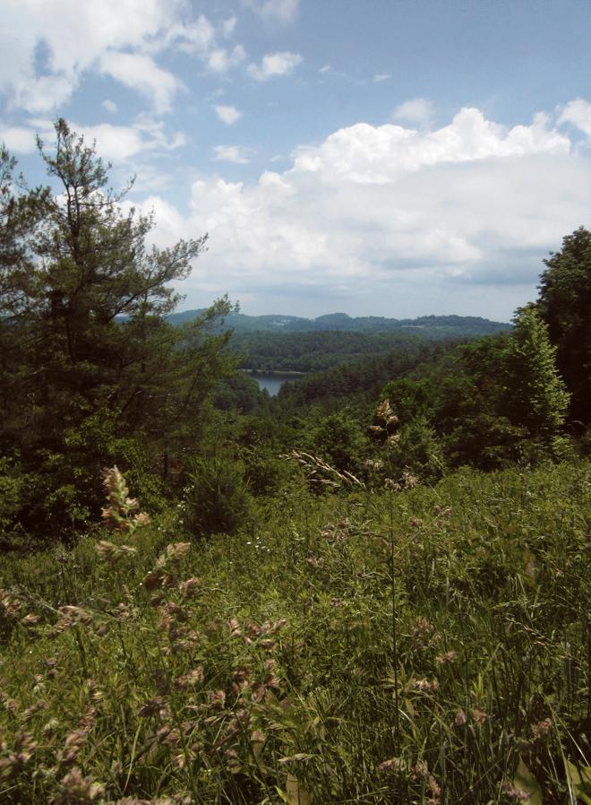 Mountain view of lake, North Carolina