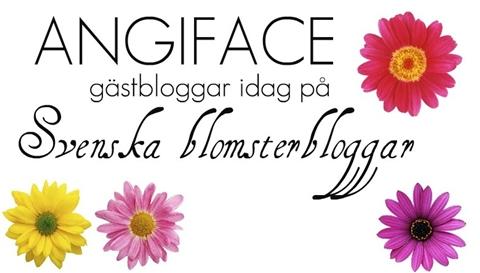 angiface blogg angelica hellgren