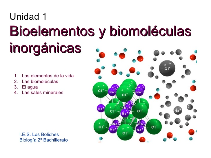 Biologia biomoleculas inorganicas for Molecula definicion
