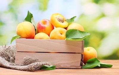 Duraznos frescos - Frutas del huerto - Apricots