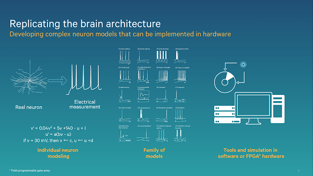 Brain Architecture